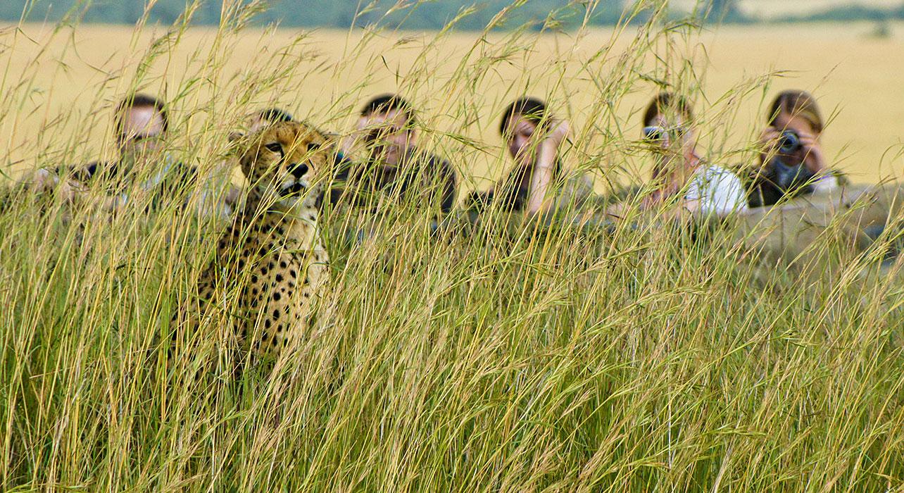 Walking Safari, Safari holidays in Africa
